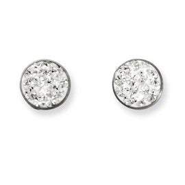 Stainless Steel Clear Crystal Post Earrings