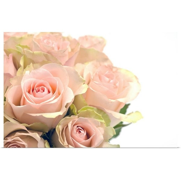 """""""Bouquet of pink roses"""" Poster Print"""