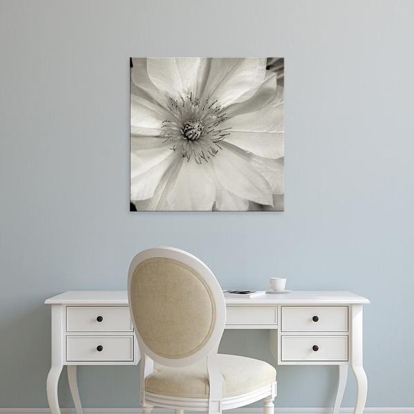 Easy Art Prints Alan Blaustein's 'Florison #32' Premium Canvas Art
