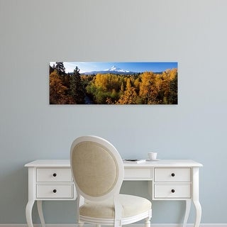 Easy Art Prints Panoramic Image 'Cottonwood trees in forest, Hood River, Mt. Hood National Forest, Oregon' Canvas Art