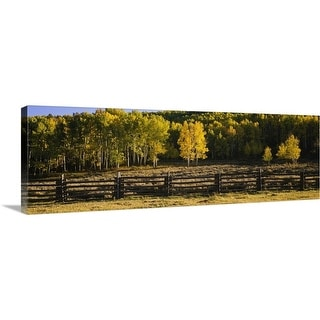 """""""Wooden fence and Aspen trees in a field, Telluride, San Miguel County, Colorado"""" Canvas Wall Art"""