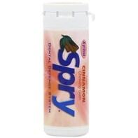 Xlear Spry Gum Tube Refill, Cinnamon, 30 Count