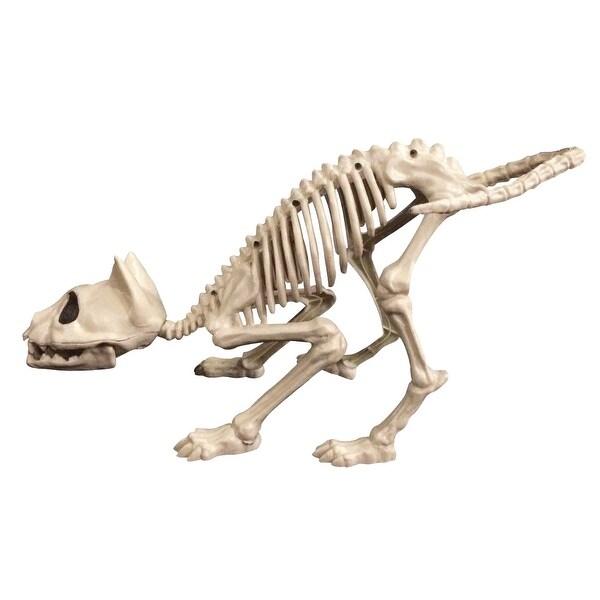 Skeleton Cat Halloween Décor