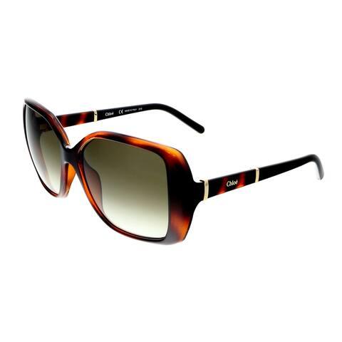 Chloe CE680/S 219 Dark Havana Square Sunglasses - 58-15-135