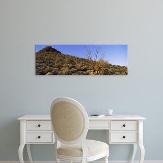 Easy Art Prints Panoramic Image 'Cactus plants, Ajo Mountain Drive, Organ Pipe Cactus National Monument, New Mexico