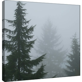 "PTM Images 9-101241  PTM Canvas Collection 12"" x 12"" - ""Foggy Morning 1"" Giclee Forests Art Print on Canvas"