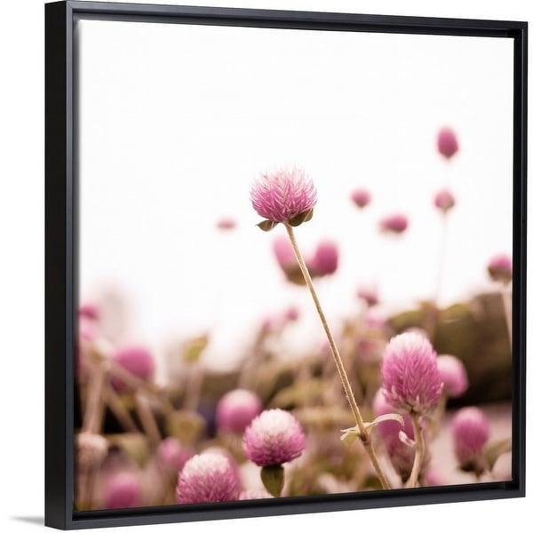 Shop Floating Frame Premium Canvas With Black Frame Entitled Pink