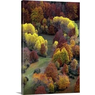 """Autumn colors"" Canvas Wall Art"
