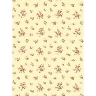 Orchid Purple Rose Toss Wallpaper Free Shipping On
