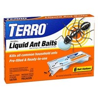 Terro T300 Indoor Liquid Ant Baits & Outdoor Ant Killer Plus