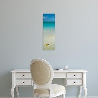 Easy Art Prints Panoramic Images's 'Starfish on the beach, Cat Island, Bahamas' Premium Canvas Art