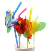 Hibiscus Straws