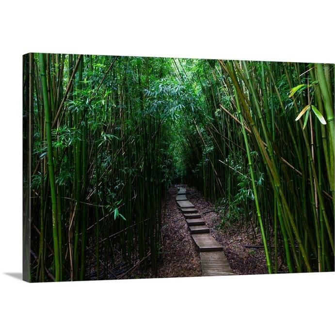 Shop Boardwalk Passing Through Bamboo Trees Hakeakala National