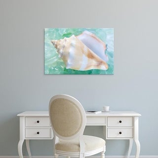 Easy Art Prints Alan Blaustein's 'Crystal Cove #28' Premium Canvas Art