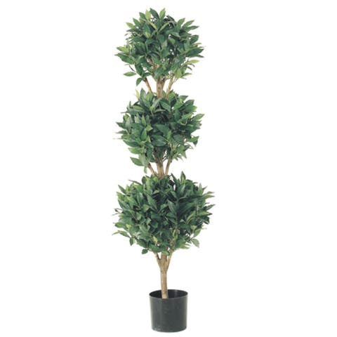 Set of 2 Potted Artificial Sweet Bay Triple Ball Topiary Trees 4' - 3-to-6-feet