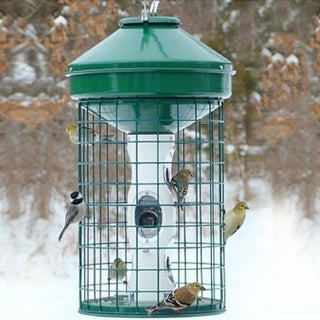 Woodlink® NAAV1MNP Heavy Duty Caged Mixed Seed Bird Feeder, 18 Lbs Capacity