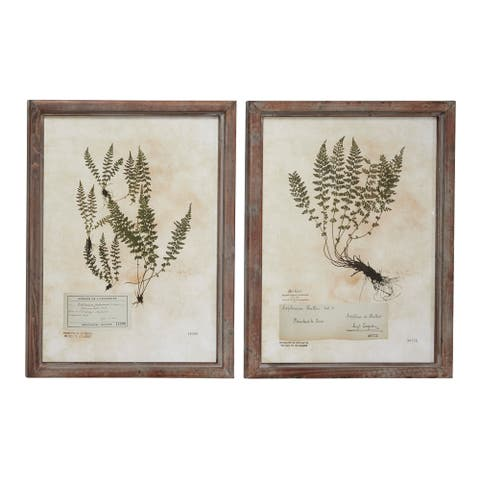 "Large Rectangular French Vintage Botanical Prints in Natural Wood Frames Set of 2 20.5"" x 27.5"" Each"