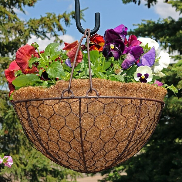 Sunnydaze Eggshell Hanging Flower Basket w Coco Liner 14 Inch Diameter