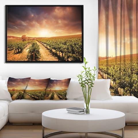Designart 'Vineyard with Stormy Sunset' Landscape Framed Canvas Art