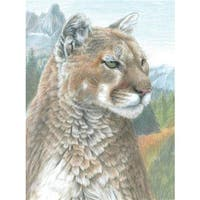 Royal Brush  Cougar Color Pencil by Number Kit - 8.75 x 11.75 in.