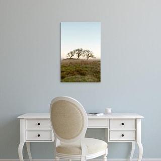 Easy Art Prints Alan Blaustein's 'Oak Tree #34' Premium Canvas Art