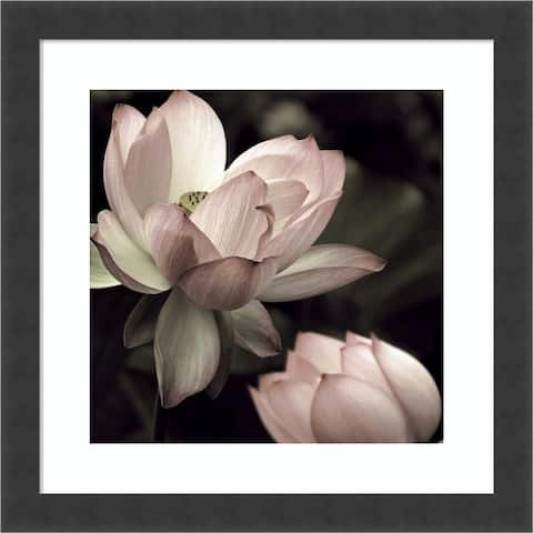 The Lotus II by Andy Neuwirth Framed Wall Art Print
