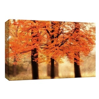 "PTM Images 9-147977  PTM Canvas Collection 8"" x 10"" - ""Three Trees"" Giclee Forests Art Print on Canvas"