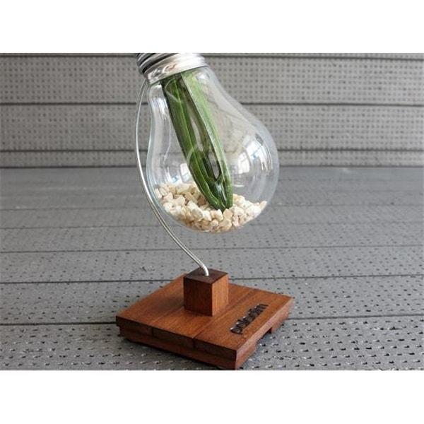 Shop Paladim Handmade Bv002 Beta Bulb Vase Free Shipping On Orders