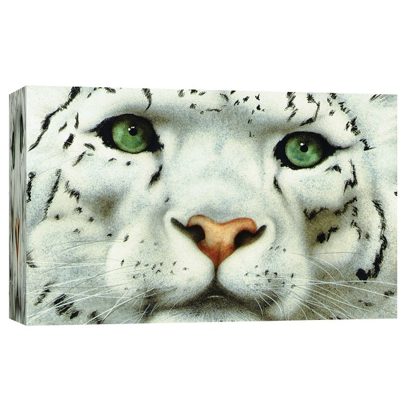 """PTM Images 9-101773 PTM Canvas Collection 8"""" x 10"""" - """"Emperor of Everest"""" Giclee Tigers Art Print on Canvas"""