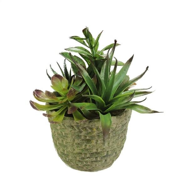 8 5 Quot Decorative Artificial Mixed Succulent Plant