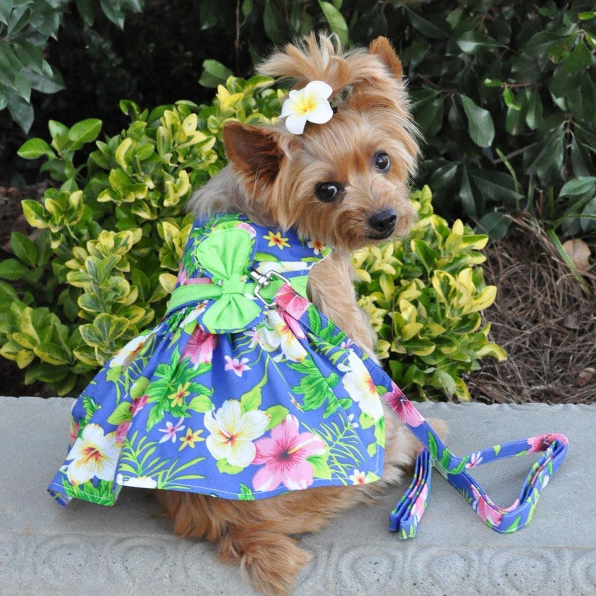 Blue Lagoon Hawaiian Hibiscus Dog Dress with Matching Leash by Doggie Design (X-Small)