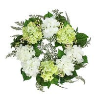 """24"""" Decorative Cream White and Green Hydrangea and Berry Artificial Floral Wreath - Unlit"""