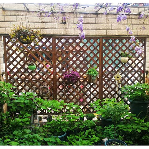 Wood Trellis Lattice Screen Privacy Fence