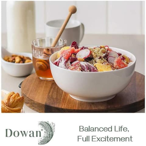 DOWAN 39 oz. 4 Piece Dining Bowl Set