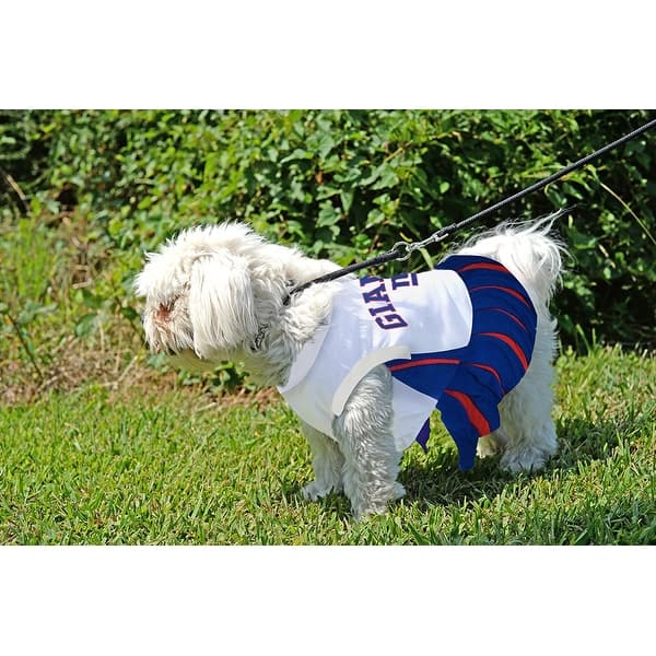 promo code 4a919 8d933 Shop NFL New York Giants Cheerleader Dress For Dogs And Cats ...