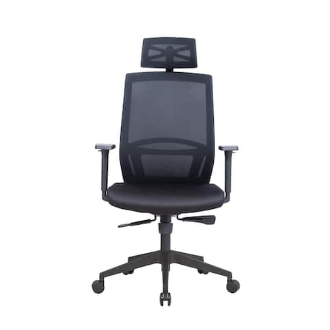 Lanbo Ergonomic Office Chair with Black Mesh, 26.4x22x47.2