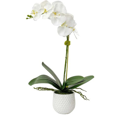 Uttermost Cami White Orchid