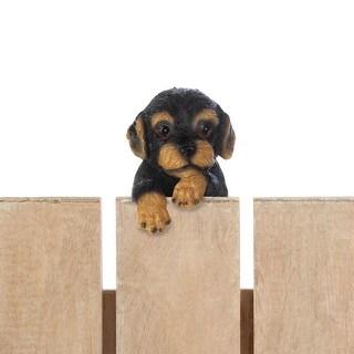"""Climbing Cutie Dotson Puppy """"parker"""""""