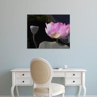Easy Art Prints Jim Christensen's 'Blushing Lotus III' Premium Canvas Art
