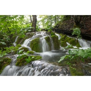 Rainforest & Waterfall Photograph Unframed Fine Art Print
