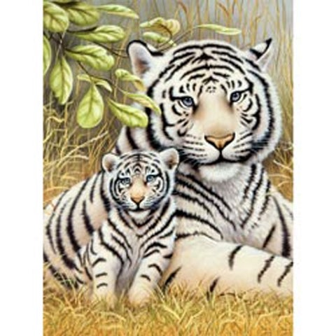 """White Tiger Pair - Junior Small Paint By Number Kit 8.75""""X11.75"""""""