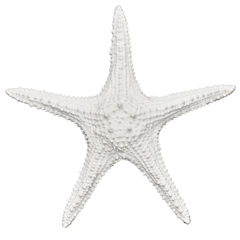 Brewster TD4358 Fetco Starfish Resin Figurine - Set of (2)