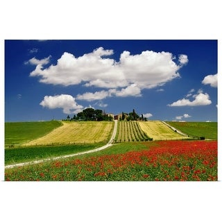"""Clouds and poppies near vineyard."" Poster Print"