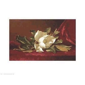 ''The Magnolia Flower'' by Martin Johnson Heade Floral Art Print (13.75 x 18 in.)