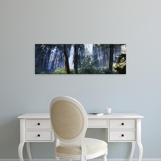 Easy Art Prints Panoramic Images's 'Waterfall in a forest, McArthur