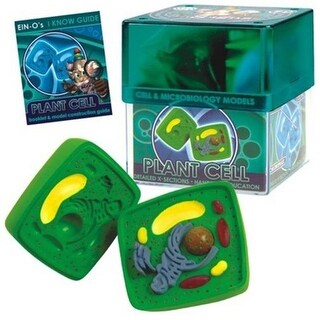 Tedco Toys 32371-PLA Bio Signs Plant Cell Model