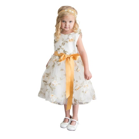 Think Gold Bows Baby Girls Gold Floral Spring Garden Flower Girl Dress 1Y
