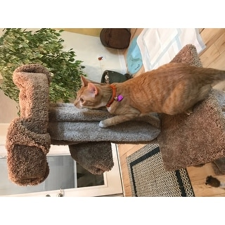 Prestige Cat Trees Unique Cat Play Tree