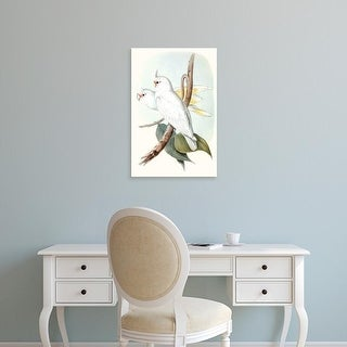 Easy Art Prints John Gould's 'Pastel Parrots II' Premium Canvas Art