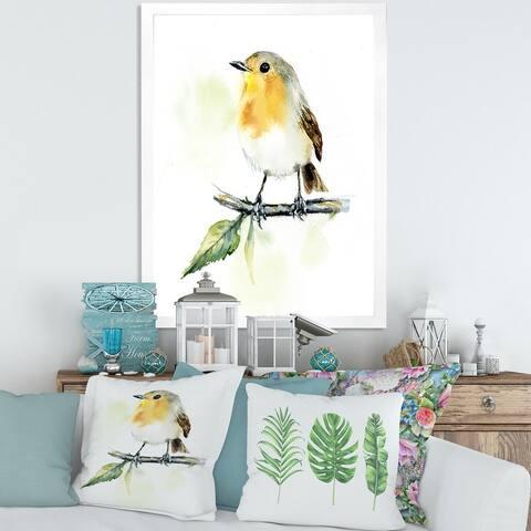Designart 'Little Robin Bird on A Branch' Traditional Framed Art Print